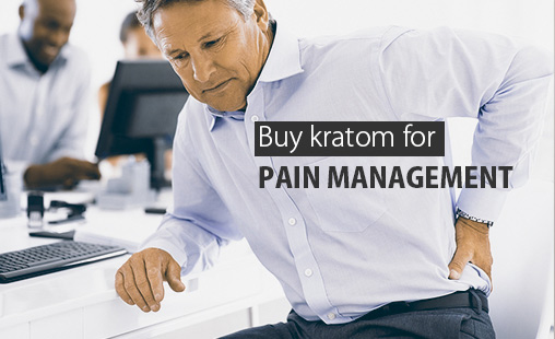 Which is the best place to buy the best Kratom for Pain management